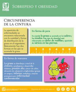 obesidad explicacion peras manzanas